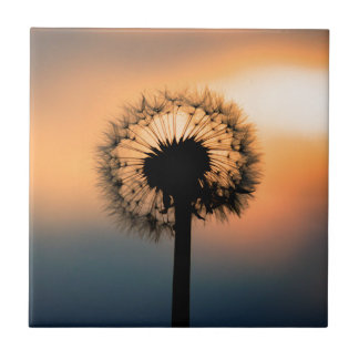 The Sunset and the Fragile Dandelion Ceramic Tiles