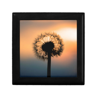 The Sunset and the Fragile Dandelion Gift Box