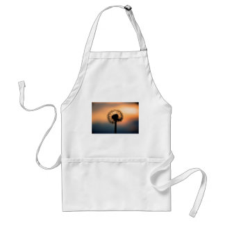 The Sunset and the Fragile Dandelion Standard Apron