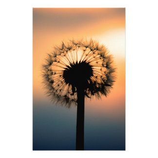 The Sunset and the Fragile Dandelion Stationery