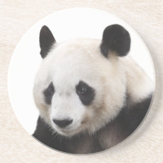 "The superior product ""of Panda"" Coaster"