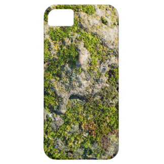 The surface of the old boulders with moss close-up case for the iPhone 5