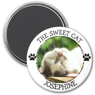THE SWEET CAT: Humorous  Pawprints Photo Button Magnet