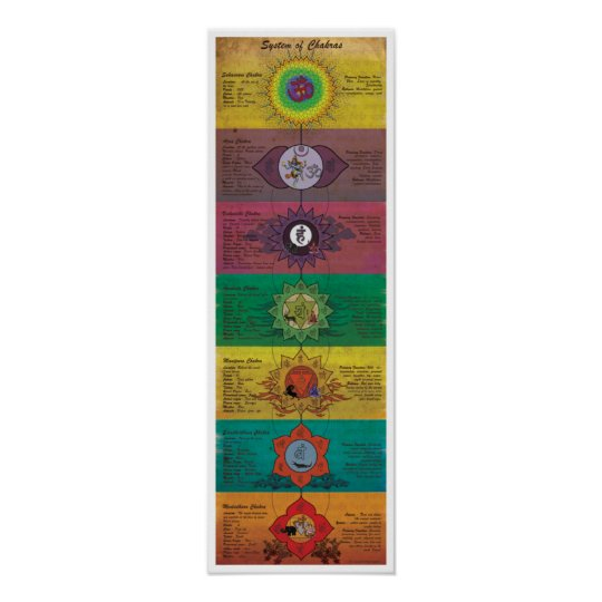 The System Of Chakras Poster