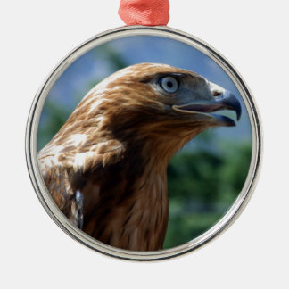 The tamed falcon metal ornament
