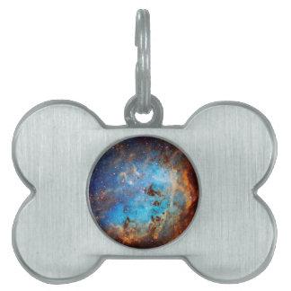 The Tapdole Nebula Pet Name Tag