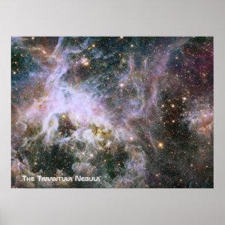 The Tarantula Nebula - Frame 4 With Title Poster