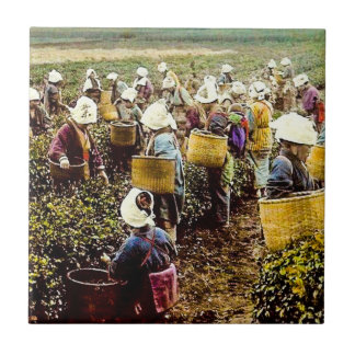 The Tea Pickers of Old Japan Vintage Hand Colored Ceramic Tiles