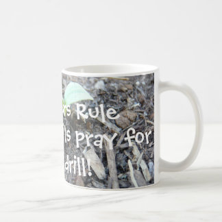 The Teachers rule Coffee Mug