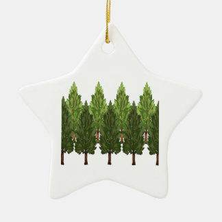 THE THICK FOREST CERAMIC STAR ORNAMENT