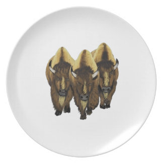 The Three Amigos Dinner Plate
