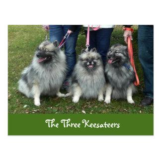 The Three Keesateers Postcard