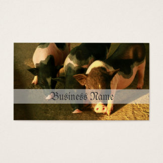 The Three Little Pigs Business Card