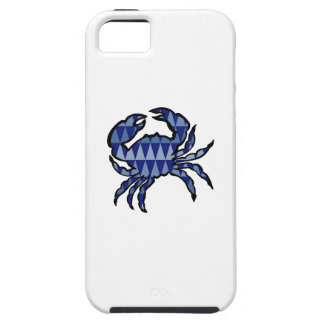 THE TIDAL POOL iPhone 5 COVER