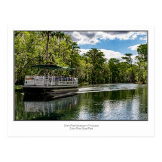 The Timucuan on Silver River Postcard