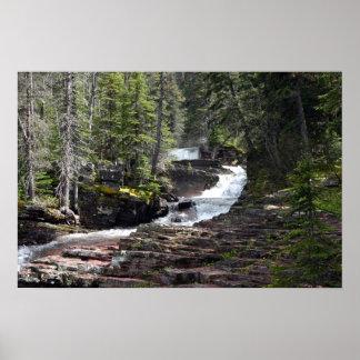 The trail to Virginia Falls, Glacier Park MT. Poster
