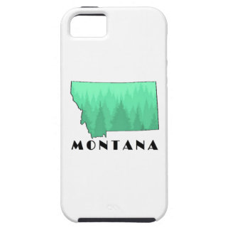 The Treasure State iPhone 5 Cases