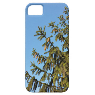 The Tree for Christmas iPhone 5 Case