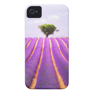 The tree in the lavender iPhone 4 cover