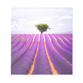 The tree in the lavender notepad