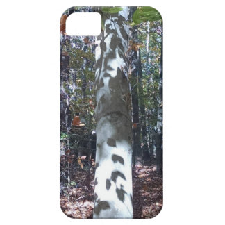 The Trees Have Eyes! Case For The iPhone 5