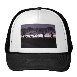 The Trees of the Honoured Dance Trucker Hat