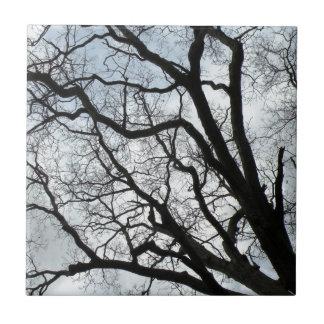 The Tree's Veins Ceramic Tile