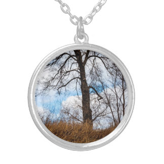 the troubled tree silver plated necklace