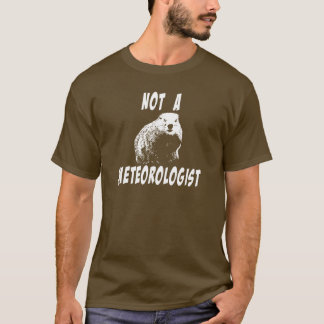 The Truth About Groundhogs T-Shirt