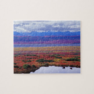 The tundra of Denali National Park in the late Jigsaw Puzzle
