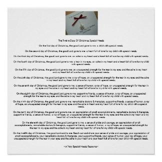 The Twelve Days Of Christmas Special Needs (AVSNR) Poster