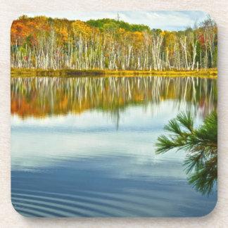 The U. P.: Autumn Birch Tree Reflections Beverage Coasters