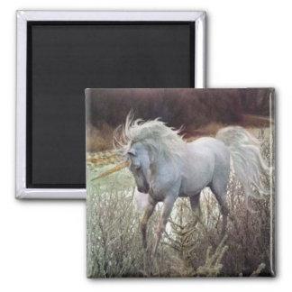 The Unicorn Magnet