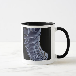 The Vertebral Column Mug