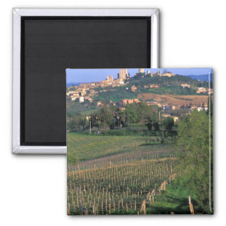 The village of San Gimignano sits in the rolling Refrigerator Magnets