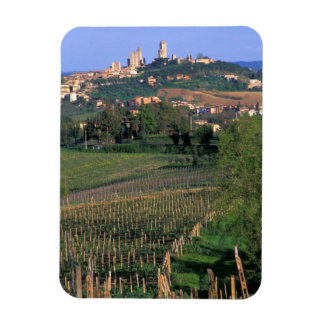 The village of San Gimignano sits in the rolling Flexible Magnet