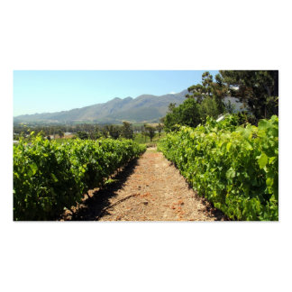 The Vineyards in Franschhoek South Africa Business Card Template