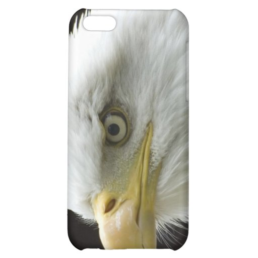 The Voice of Freedom iPhone 5C Cover