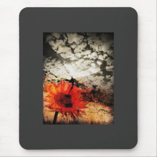 the walk mouse pad