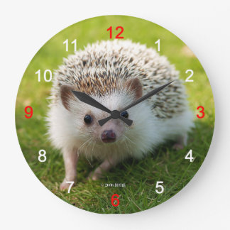 """The wall-mounted clock """"of Four-toed hedgehog"""", No"""