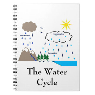 The Water Cycle Notebook