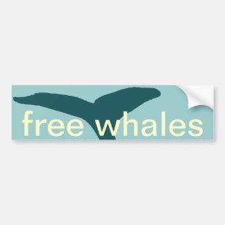 the whales bumper sticker