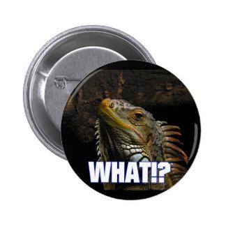 The What Iguana Pin