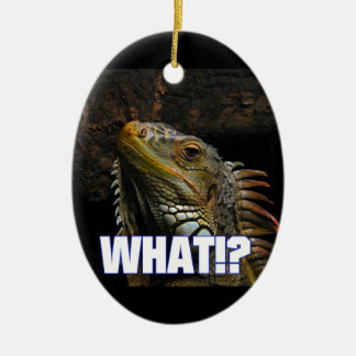 The What!? Iguana Ceramic Oval Ornament