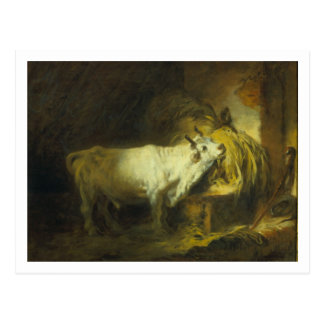 The White Bull in the Stable (oil on canvas) Postcard