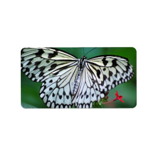 The White Butterfly Personalized Address Labels
