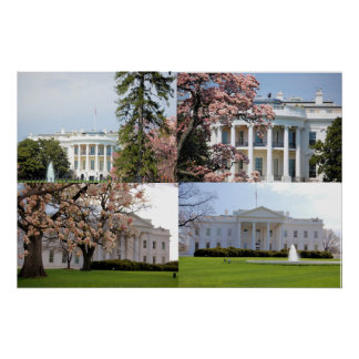 The White House Collage Poster