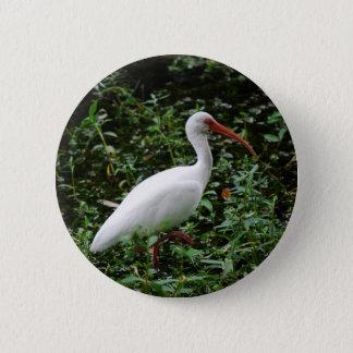The White Ibis... 2 Inch Round Button