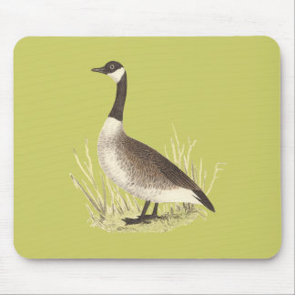 The Wild Goose	(Anser canadensis) Mouse Pad