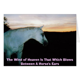 The Wind of Heaven  Card